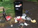 Small public bin overflowing with KFC and dog poo